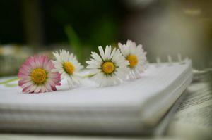 anders-voelen-7-tips-geluk-sophiamagazine