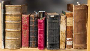 boekrecensie-Geest-en-Beest-door-Marianne-Vogel